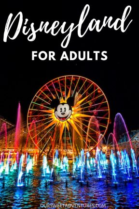 The World of Color is the perfect show at Disneyland for adults. The show mixes color, light, music and theatre into one masterpiece for the audience. You cannot miss it!