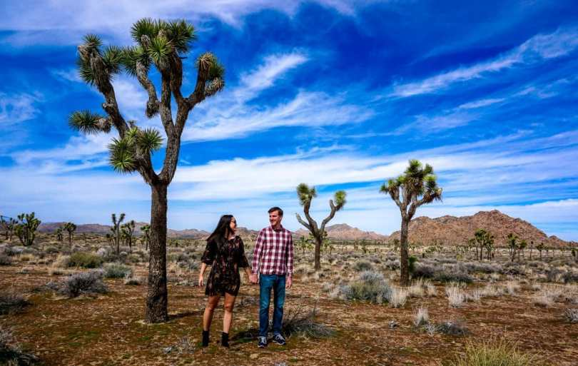 A couple enjoying their day trip to Joshua Tree National Park by holding hands and walking among the trees in the desert.