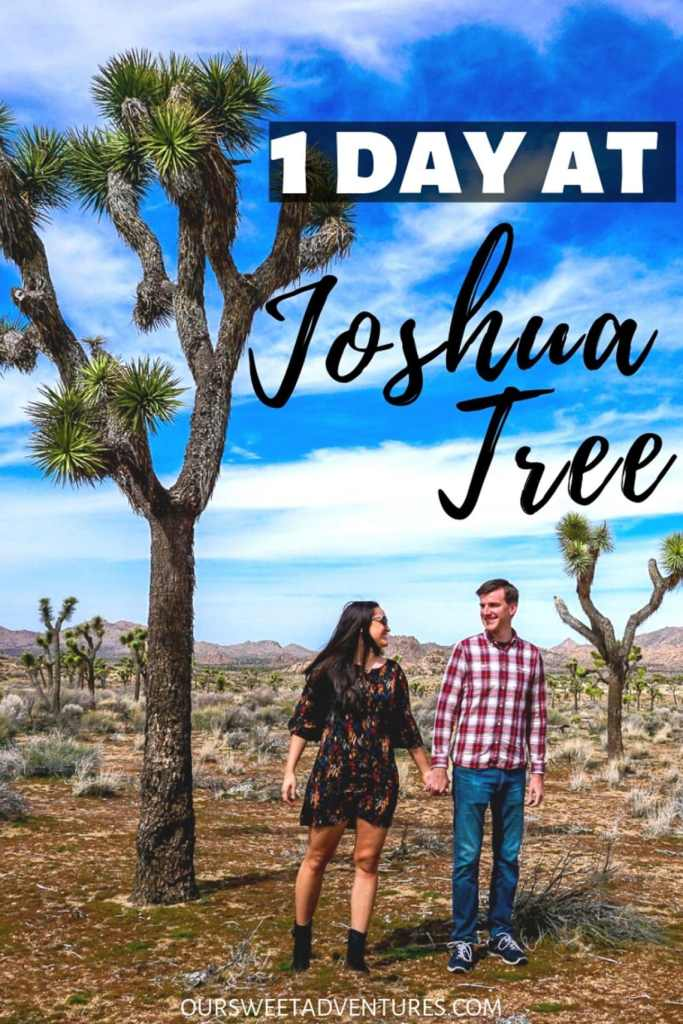 """A couple holding hands and looking at each other with a huge Joshua Tree towering over them with text overlay """"1 Day at Joshua Tree""""."""