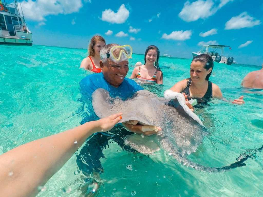 A hand reach out to stroke a wild stingray being held by a tour guide at Stingray City in the Grand Cayman. Also in the photo are three other women around the stingray.
