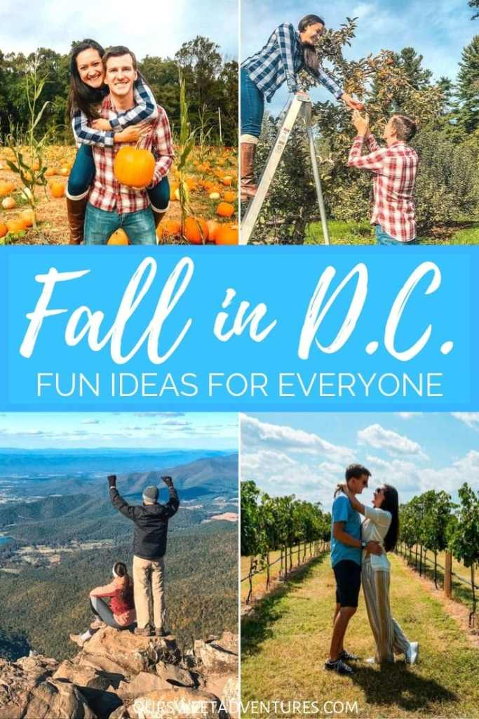 "A 4 picture collage of the same couple posing. One is them at a pumpkin patch. Second is them picking apples. The third is standing on the edge of a mountain. The last one is standing in a wine vineyard. Text overlay ""Fall in D.C. Fun ideas for everyone."""