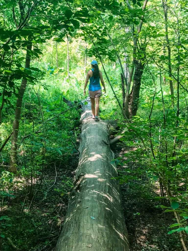 A woman hiking near Washington D.C. on a log in a green forest at Theodore Roosevelt Island.