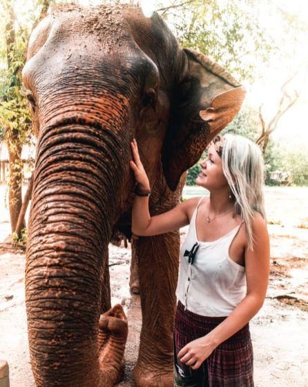 LUB D KOH SAMUI ELEPHANT SANCTUARY
