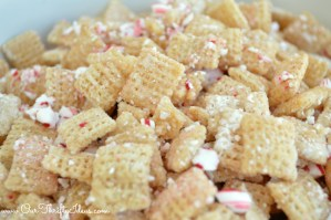 Winter Wonderland mix - almond peppermint & white chocolate cocoa flavors all mixed into one yummy treat | www.OurThriftyIdeas.com #recipe #dessert #treat
