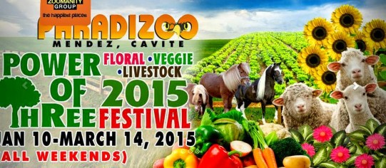 paradizoo-the-power-of-three-2015-event-our-travel-dates-image2