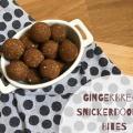 Snickerdoodle Gingerbread Bites