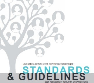 NGO Mental Health Lived Experience Workforce Standards and Guidelines Self Assessment Tool