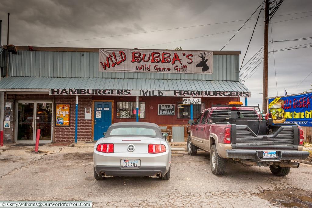 Wild Bubba's, Texas, America, USA