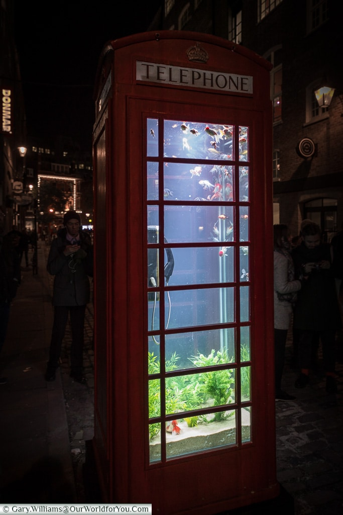 Fish in a phonebox, Lumiere London, London, England, UK