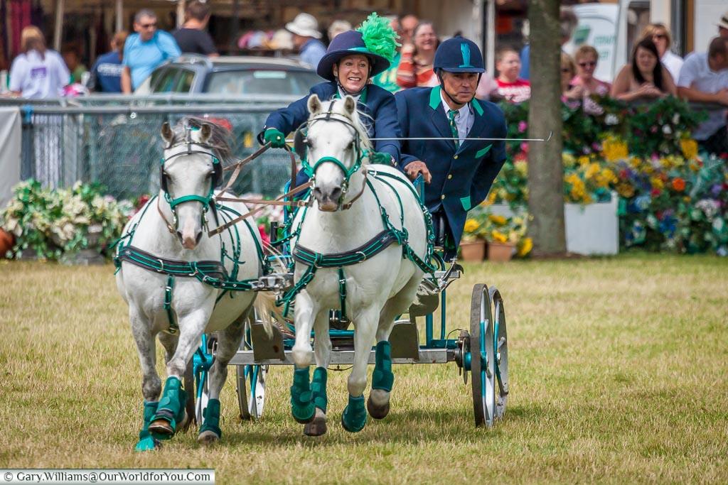 Horse and Trap racing, Kent County Show, Kent, England, UK