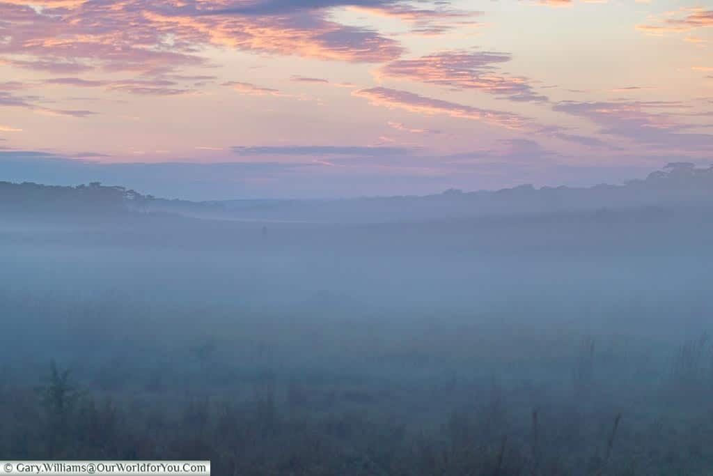 Mist hangs over the valley that used to once be a river bed, with a golden sky, tinged with purples before the sun rises.