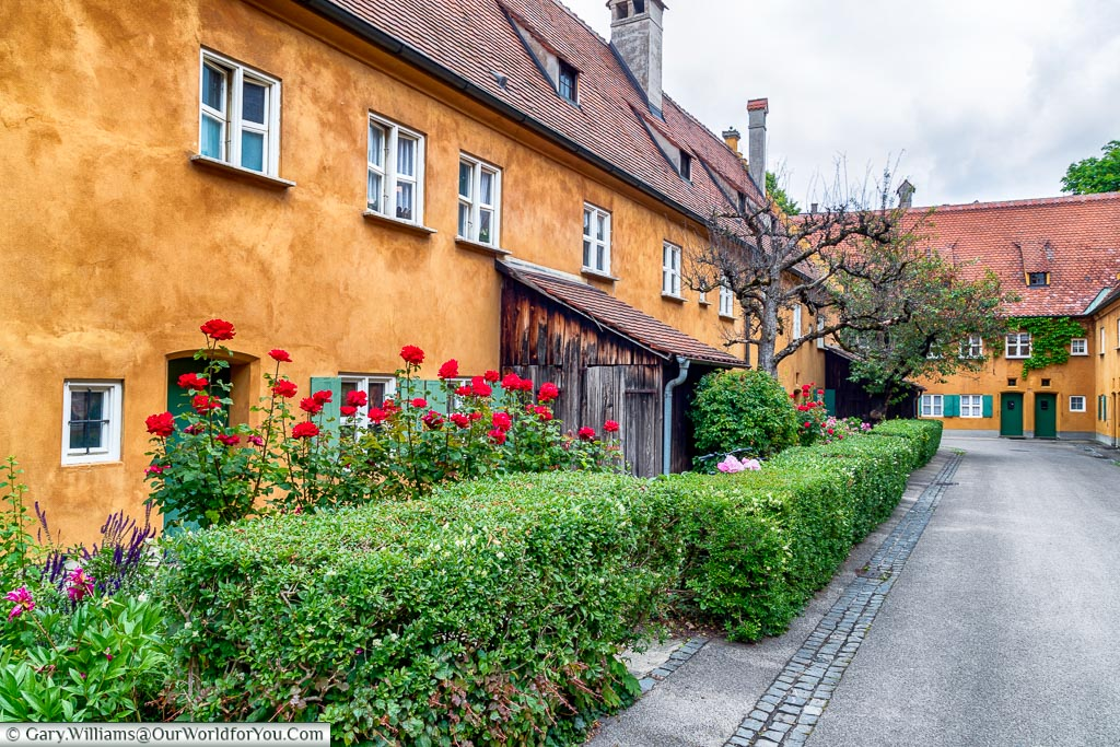 A hedge in front of beautifully tended small front gardens of the homes in the Fuggerei.