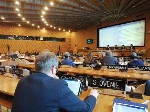 Slovenija vodilna država na področju prosto dostopnih izobraževalnih virov