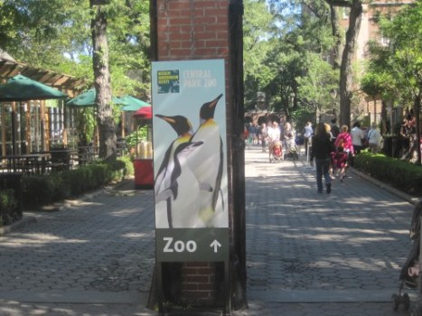 central park zoo in new york city. Black Bedroom Furniture Sets. Home Design Ideas