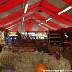 Wordless Wednesday: Stew Leonard's {FREE} Hay Maze