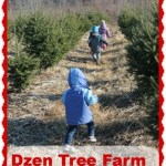 Christmas Tree Time at Dzen Tree Farm