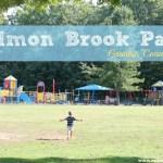 Salmon Brook Park Playground