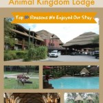 Top 10 Reasons We Enjoyed Our Stay at Disney's Animal Kingdom Lodge