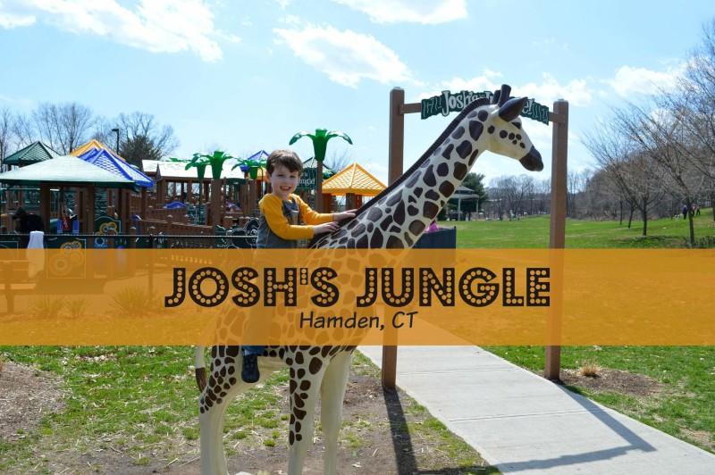 Josh's Jungle Hamden CT