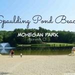Spaulding Pond Beach at Mohegan Park