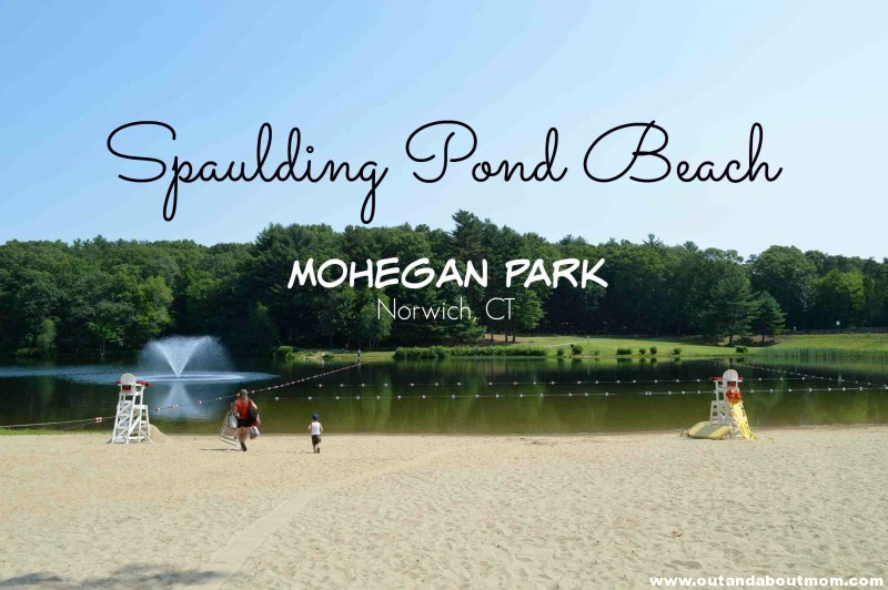 Mohegan Park Feature