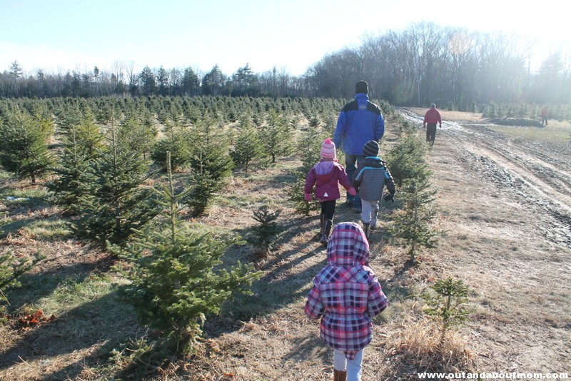 Coward's Farm_Out and About Mom_Christmas Tree (6)