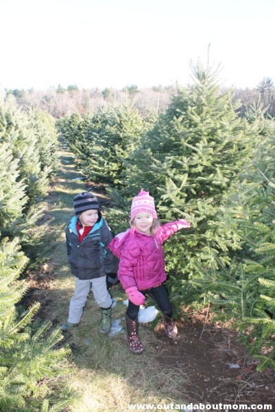 Coward's Farm_Out and About Mom_Christmas Tree (9)