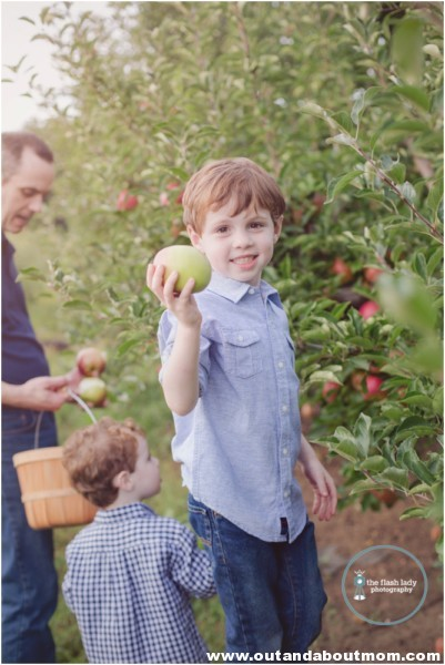 gale-family-fall-apple-picking-web_0011