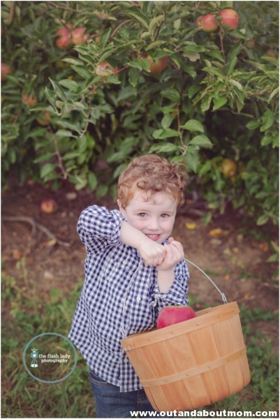 gale-family-fall-apple-picking-web_0015