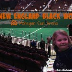 New England Black Wolves Lacrosse at Mohegan Sun Arena