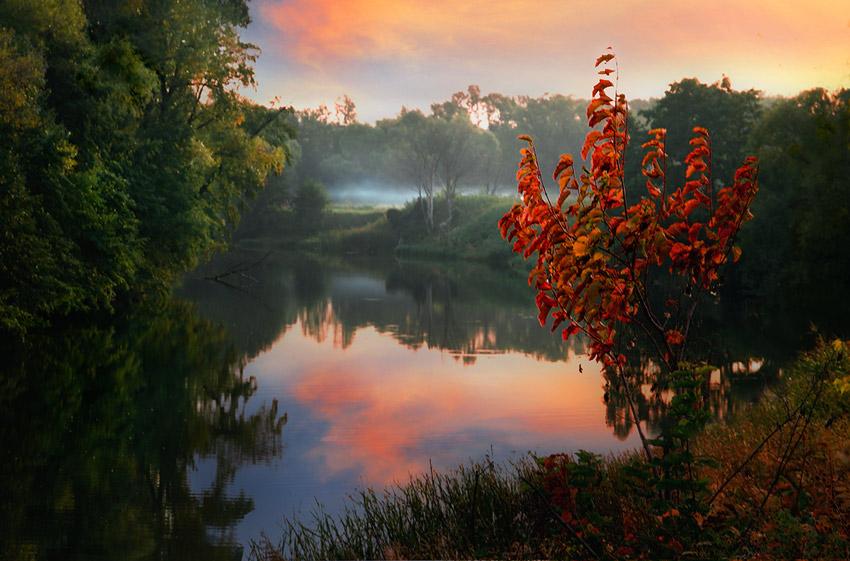 Autumn fire | lake, autumn, reflection
