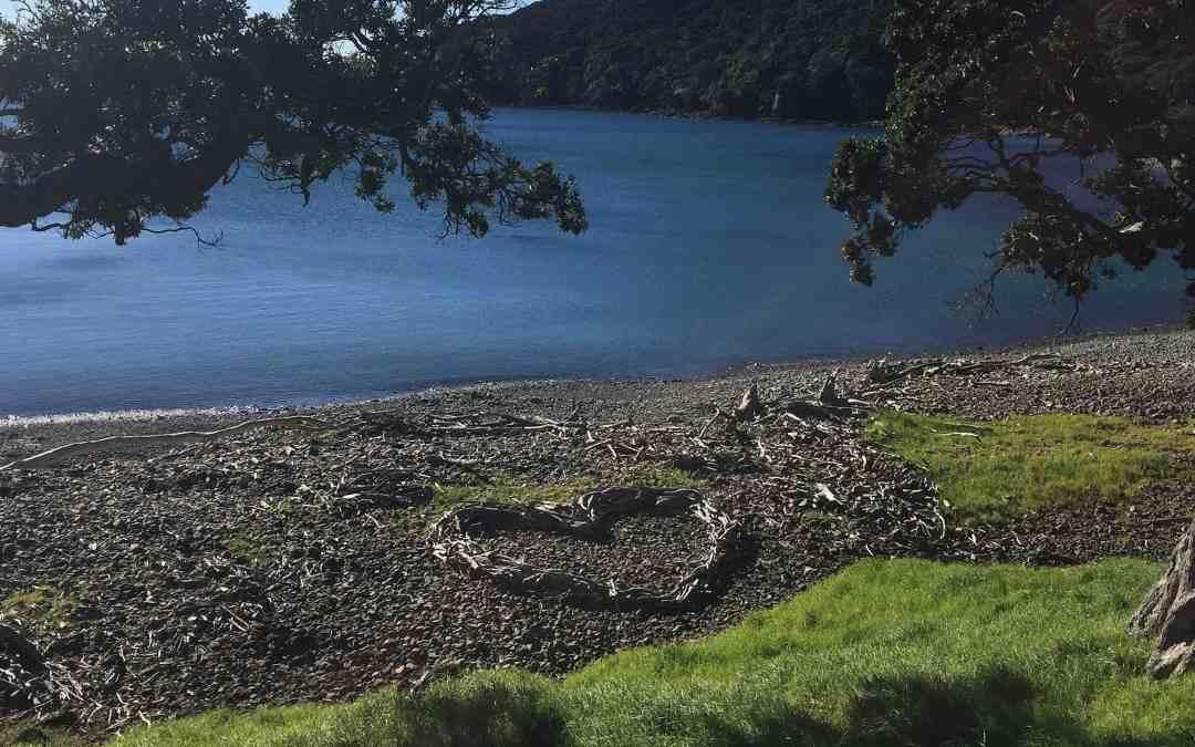 Stony Bay, Coromandel NZ