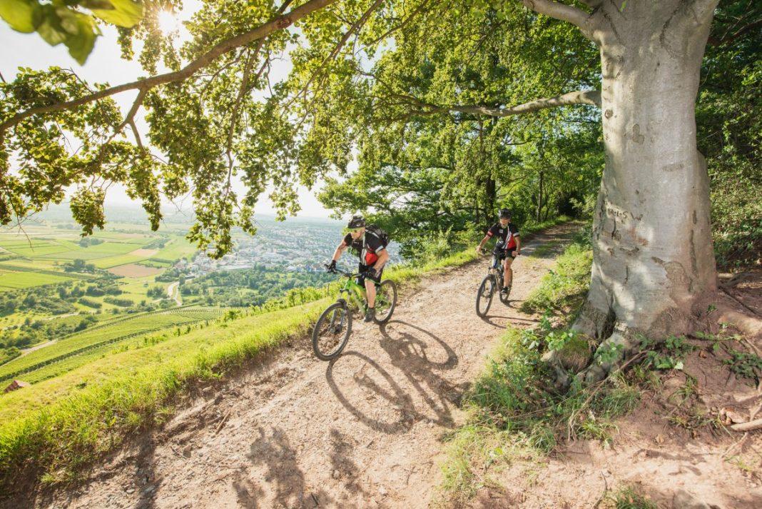 Sportief fietsen in het Remstal. Foto: Bebop Media