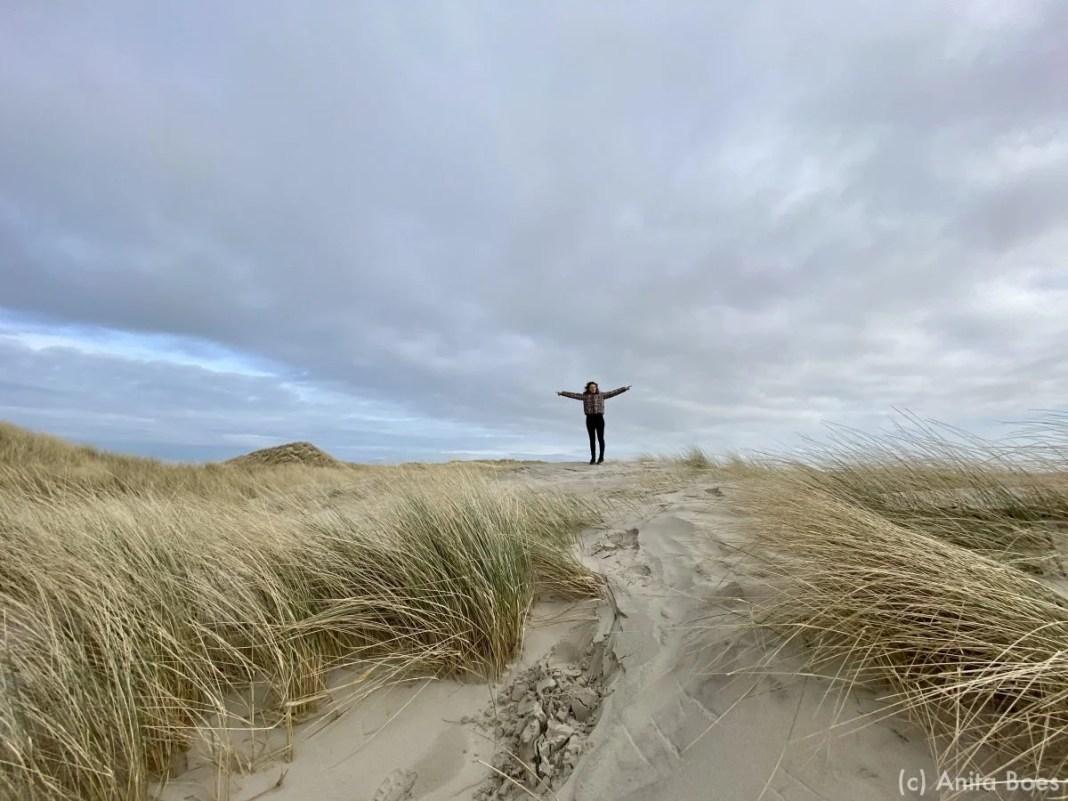 Links de Noordzee, rechts de Waddenzee. Vanaf de duintop kun je beiden zeeën zien liggen.