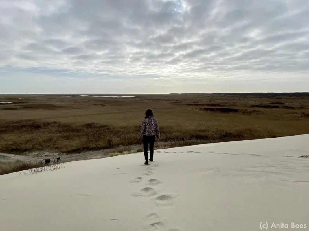 Aan de oostkant van Terschelling bij de Boschplaat kun je wandelen in de duinen zonder iemand tegen te komen.