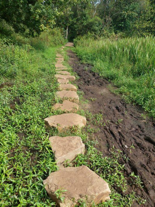 Stenen in de modder