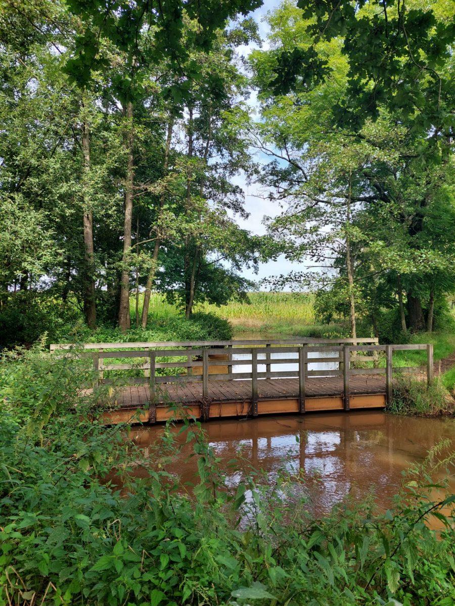 Bruin water met brug
