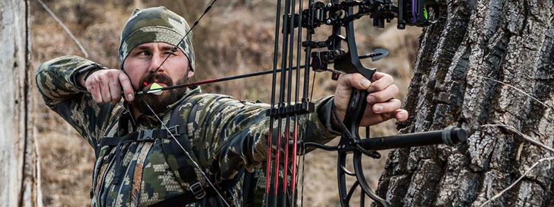Best compound bow Reviews 2019 – For Pro Hunters & Beginners