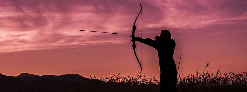 Best Recurve Bow For Hunting 2020 – Review & Guideline By Expert