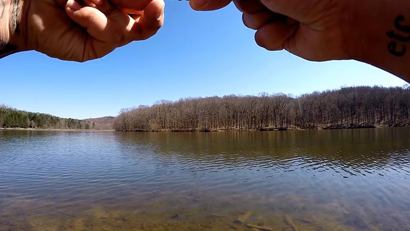 Fish In Deeper Water