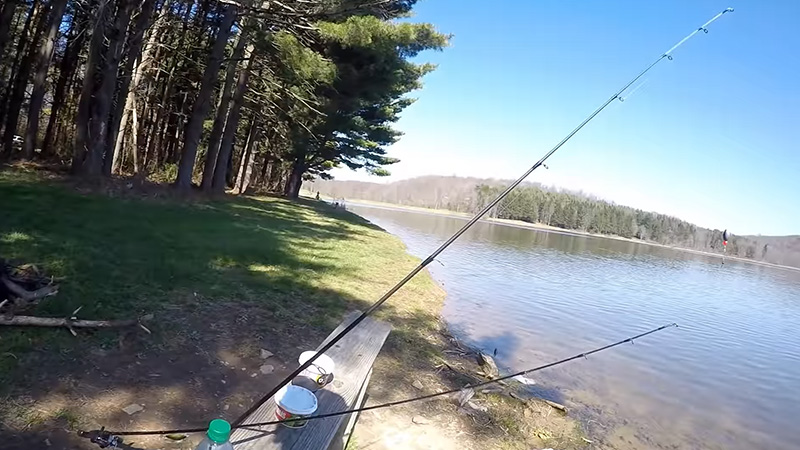 Some Tips On Trout Fishing