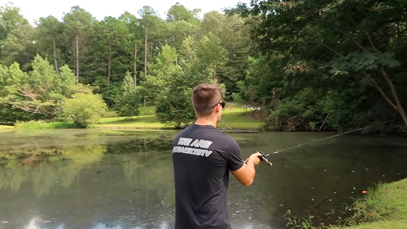Pond Bass Fishing Tips And Techniques