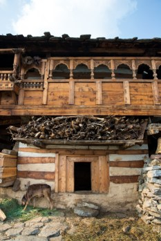 The houses of Kalap are three-tiered structures made of deodar wood, mud and stones. Photo Courtesy Swati Chauhan/ The Outdoor Journal