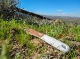 A toothbrush lying near the border.