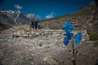 Finding pristine wilderness in the Himalaya is not as easy as before