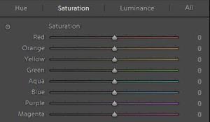 HSL / Color / B&W panel
