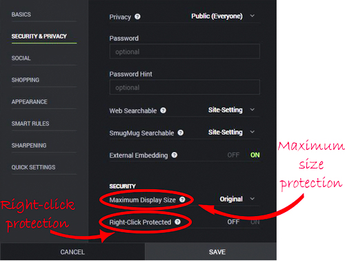 Smugmug and others offer some protection to your photos, including right-click protection and the ability to limit the size of your photos.
