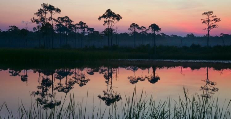 Sunrise at Western Lake, Seaside, FL