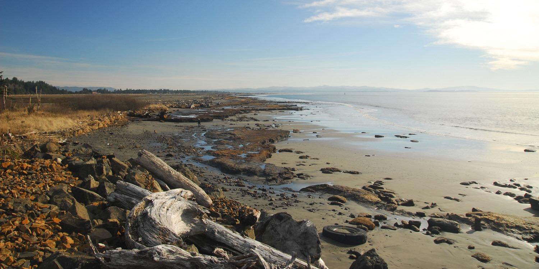 North Cove, Washaway Beach - beaches in Washington