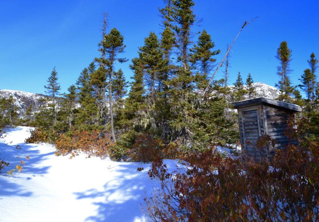 Alexander Murray Trail